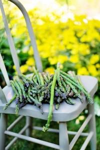 asparagus-825755_1920