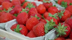 strawberries-823782_1920